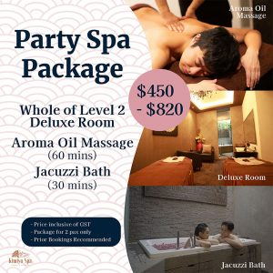 Party Spa Package